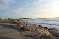Tel Aviv - Vacation Rentals